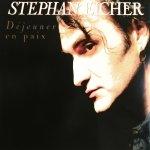Stephan Eicher - Déjeuner en paix