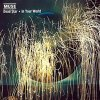 Muse - In Your World